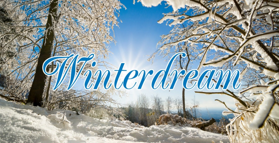 12 - Winterdream